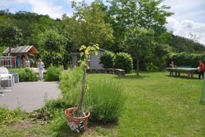 Garten_DSC_4798m